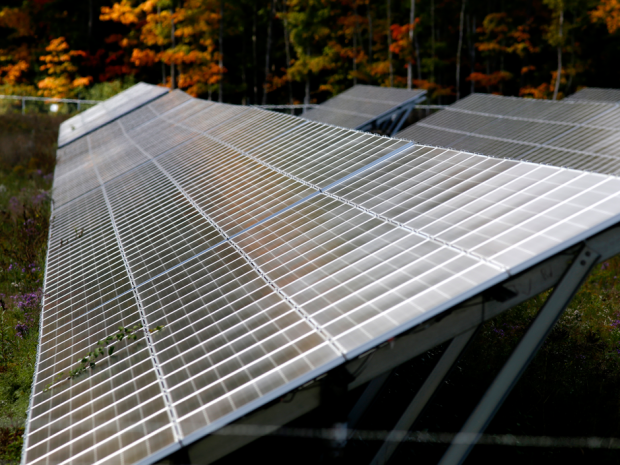 A TransCanada solar array reflects some fall colour at a solar farm on the outskirts of Brockville, Ontario, Oct. 4, 2016. Darcy Cheek/Postmedia Network.